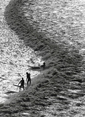 Surfers and canoeists ride a Severn Bore surge wave in Newnham