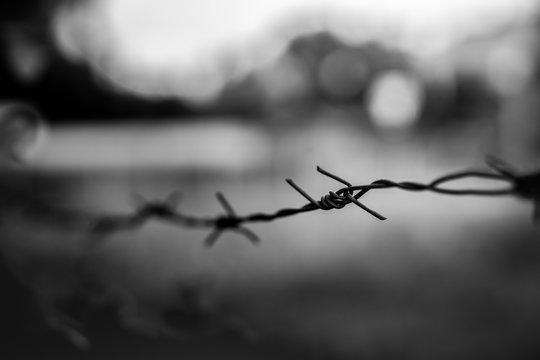 Black and white barbed wire. Dramatic photo of historic scenery at the Auschwitz concentration camp