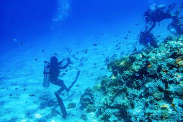 Salle de bain murale en verre imprimé Recifs coralliens divers swimming underwater near coral reefs
