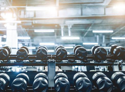 rows of dumbbells in modern athletic club
