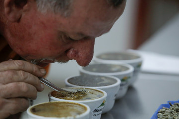 A coffee taster tests the quality of a product at a coffee plantation, in Grecia