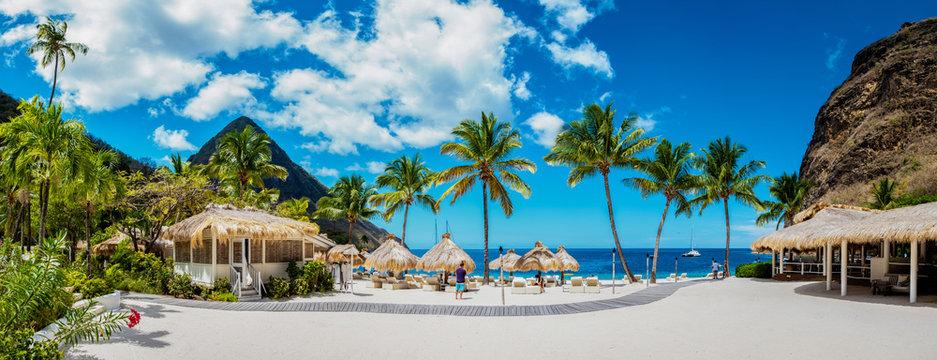 Sugar beach Saint Lucia , a public white tropical beach with palm trees and luxury beach chairs on the beach of the Island St Lucia Caribbean
