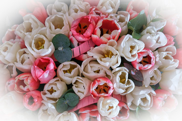 Foto op Canvas Lelie Background. A bouquet of white and red tulips, a view from the top, vignette.