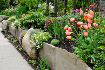 Printed kitchen splashbacks Gray traffic Beautiful stone wall, retaining garden with tulips and flox