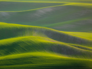 Poster Khaki Palouse Abstract