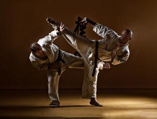 Full Length Of Men Practicing Kyokushin