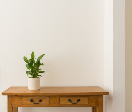Green leafy houseplant in white pot on oak side table against white wall