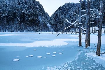 厳寒の自然湖