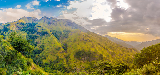 Wall Mural - Morning view at the Litle Adams Peak Mountain in Sri Lanka