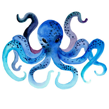 Watercolor hand drawn illustration of octopus in blue color with spots. Blue color octopus tentacles. Animal in cartoon style. Design for covers, backgrounds, decorations.
