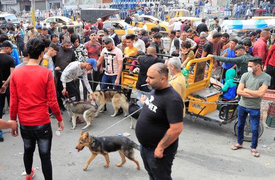 Iraqi men sell animals at the Ghazal pet market in Baghdad
