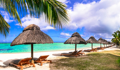 Fototapete - Tropical relaxing holidays in one of the best beaches of Mauritius island Le morne