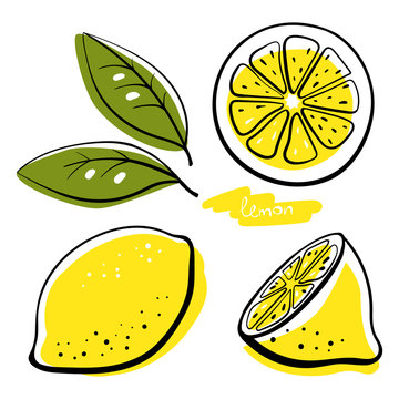 Lemon, whole, half, slice and leaves. Colorful sketch collection of citrus fruits isolated on white background. Doodle hand drawn vegetables. Vector illustration
