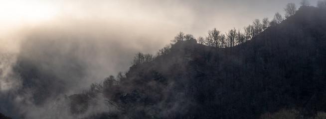 Les pentes escarpées des gorges de l'Ouche en hivers, Conques Fototapete