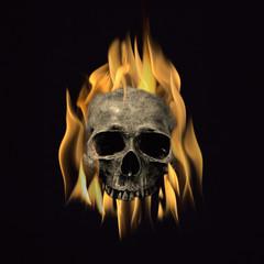 Skull on Hot Fire in Black
