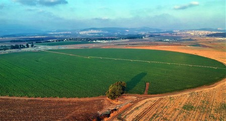 Printed kitchen splashbacks Light blue Center pivot irrigation and Circular agriculture perfectly circular fields, as seen in this image.