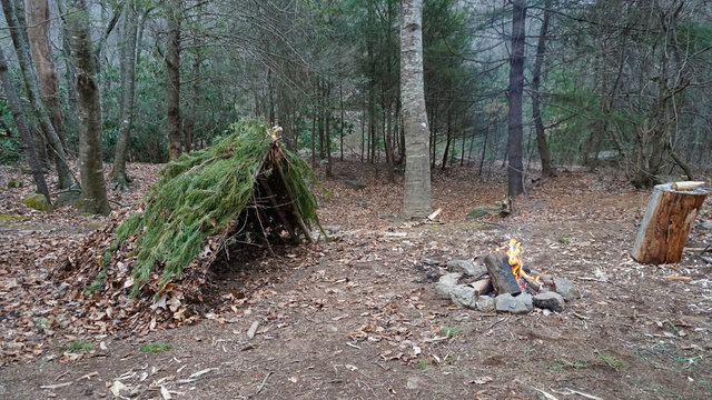 Primitive Bushcraft survival debris hut with campfire ring outside. Blanket, shelter, fire in the forest. Social distancing, CoronaVirus Pandemic disease Prepping, prepper