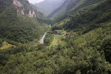Printed kitchen splashbacks Khaki Paradise Corner in the Mountains. summer Montenegro