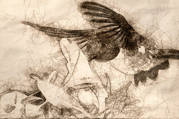 Wall Mural - Sketch of a Black-Chinned Hummingbird Searching for Nectar Among the Violet Flowers