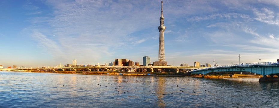 Wide Panoramic Cityscape of Tokyo, Japan from Asakusa District with Bridge over Sumida River and Distant Skytree, World Tallest Tower, on Horizon