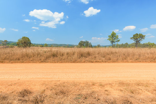 View of dirt road in countryside with blue sky