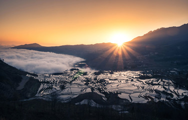 Tuinposter Rijstvelden Terraced rice fields of YuanYang , China with beautiful sun rise