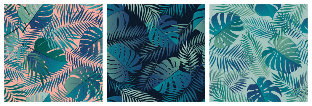 Set of seamless patterns with exotic green monstera leaves and palm branches, summer tropical backgrounds