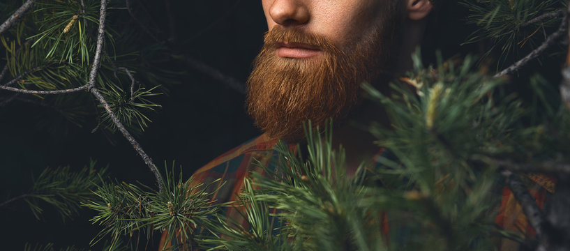 Close up shot of red beard. Hipster man in the forest. Brutal bearded man in the woods on a background of trees Bearded young man confident wide shot with copy free space on left