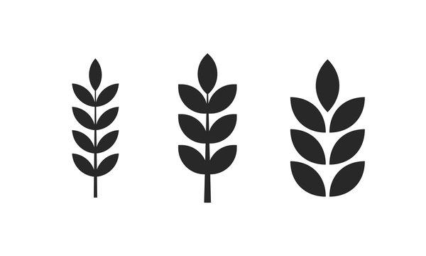 Agriculture wheat logo icon sign. Farm plant logotype.