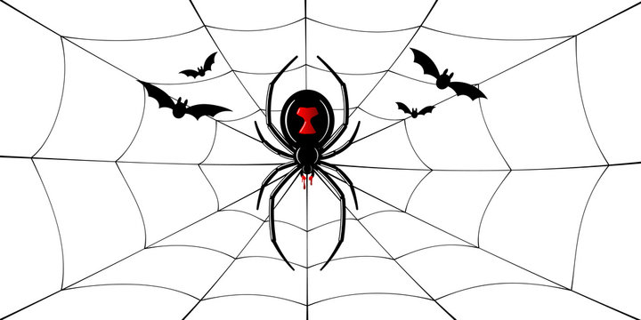 Spider Black Widow, cobweb, bats. Red black spider 3D, spiderweb, isolated white background. Scary Halloween decoration web. Symbol networking, animal arachnid, creepy insect fear. Vector illustration