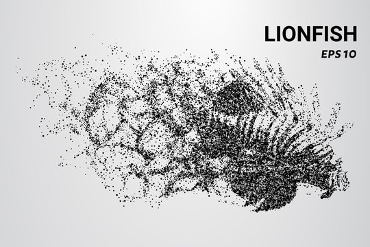 Lion fish from the particles. The lion fish consists of circles and dots. Lion fish falls apart on the molecule.