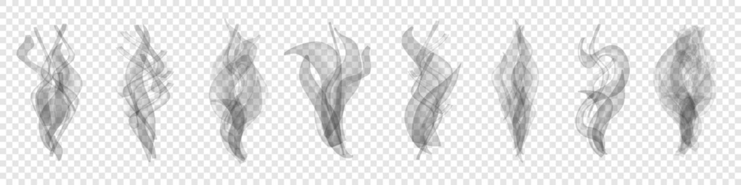 Set of realistic transparent smoke or steam isolated in white and gray colors, fog and mist effect. Collection of white smoke steam, waves from tea, coffee, hot food, cigarettes - vector