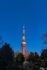Fotobehang Seoel 青空の東京タワー