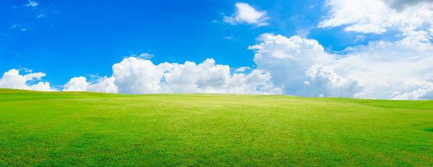Poster Culture Green grass field and blue sky with white clouds,panoramic view.