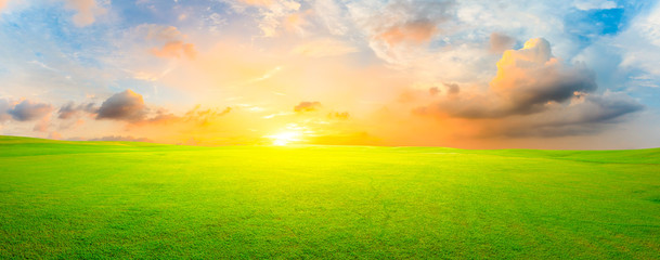 Green grass field and colorful sky clouds at sunset,panoramic view.