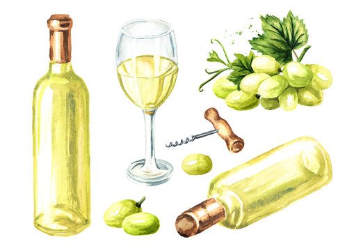 White wine set, glass, bottle, grape. Hand drawn watercolor illustration, isolated on white background