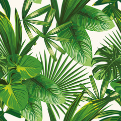 Wall Mural - Tropical green leaves seamless white background