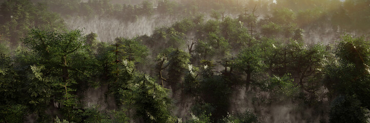 beautiful forest landscape at dawn, foggy wilderness with green trees Fototapete