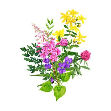 Wild flowers bouquet, fireweed clover and st johns wort