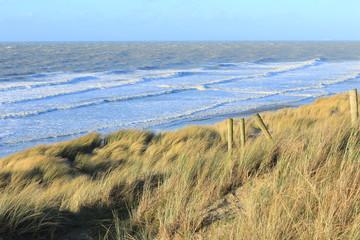 Dünen und Meer bei Bredene