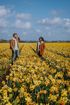 yellow flower field, couple walking in yellow flower bed yellow daffodil flowers during Spring in the Netherlands Lisse