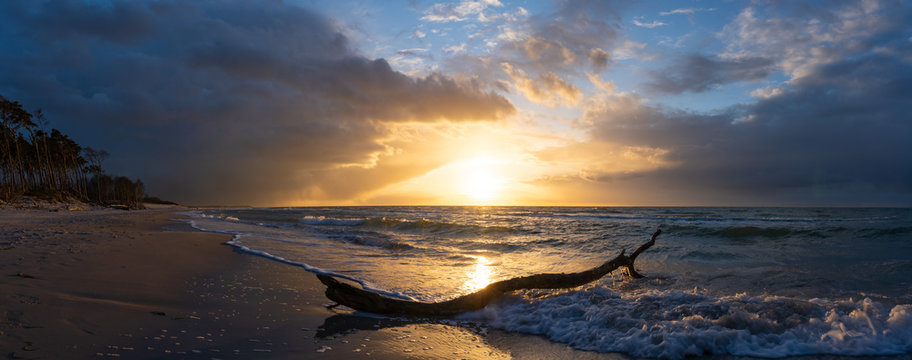 beautiful sunset over the sea, panorama view of a dramatic sunset with dark clouds. rain clouds or storm clouds before the storm, tree trunk lies in the water on the bea