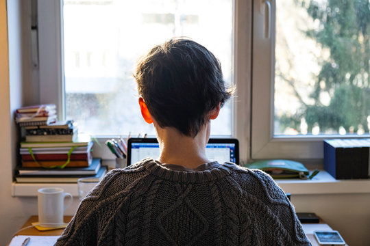 Back of young caucasian entrepreneur woman in sweater sitting and working online from home on computer laptop
