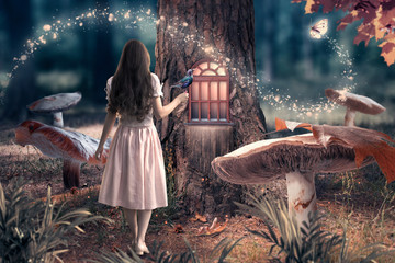 Girl in dress with bird in hand in fantasy enchanted fairy tale forest with giant mushrooms, magical shining window in pine tree hollow and flying magic butterfly leaving path with luminous sparkles Fotomurales