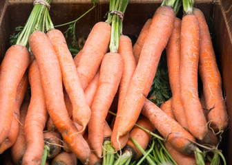 Fresh carrots in a box