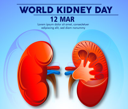 Illustration Of World Kidney Day Poster Or Banner Background.Kidney care logo design. Urology vector design. World kidney day logotype