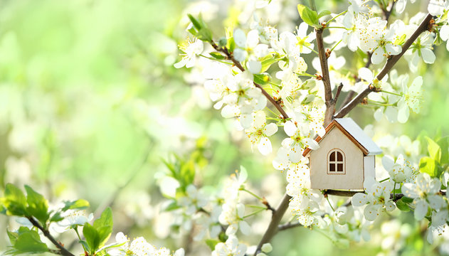 toy house and cherry flowers. spring nature background. concept of mortgage, construction, rental, using as family and property concept. copy space