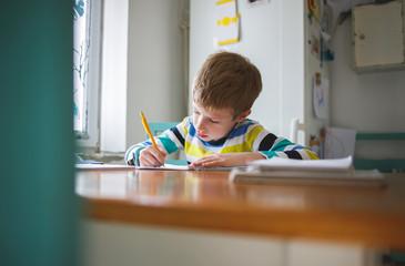 Little Boy Doing Homework at Home