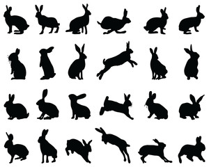 Black silhouettes of rabbits on white background