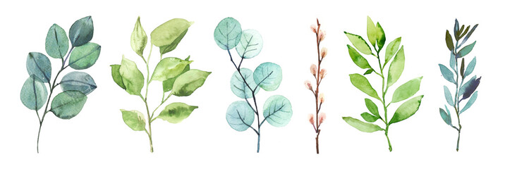 Fototapeta Watercolor hand painted botanical spring leaves and branches illustration isolated on white background obraz